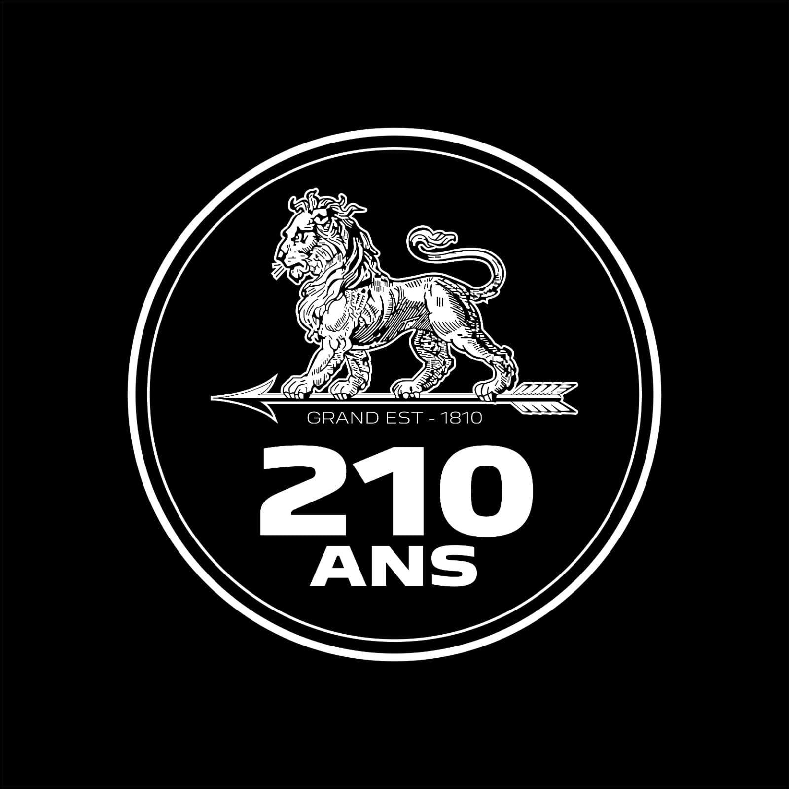 peugeot 210 ani